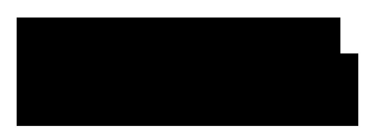 Aeroaus